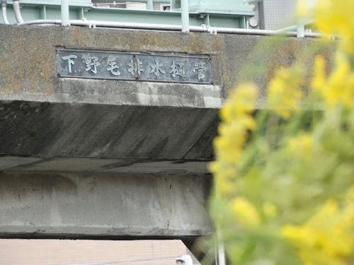 20131019 tamagawa 02.jpg
