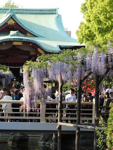 20140427 亀戸B 06.jpg